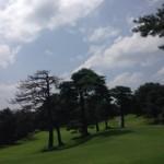 ゴルフスイング 力を抜いて振る方法w