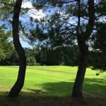 夏のゴルフ…37度の中の金沢ゴルフ1.5ラウンド